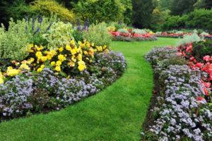 Adopter un jardin attractif pour votre maison