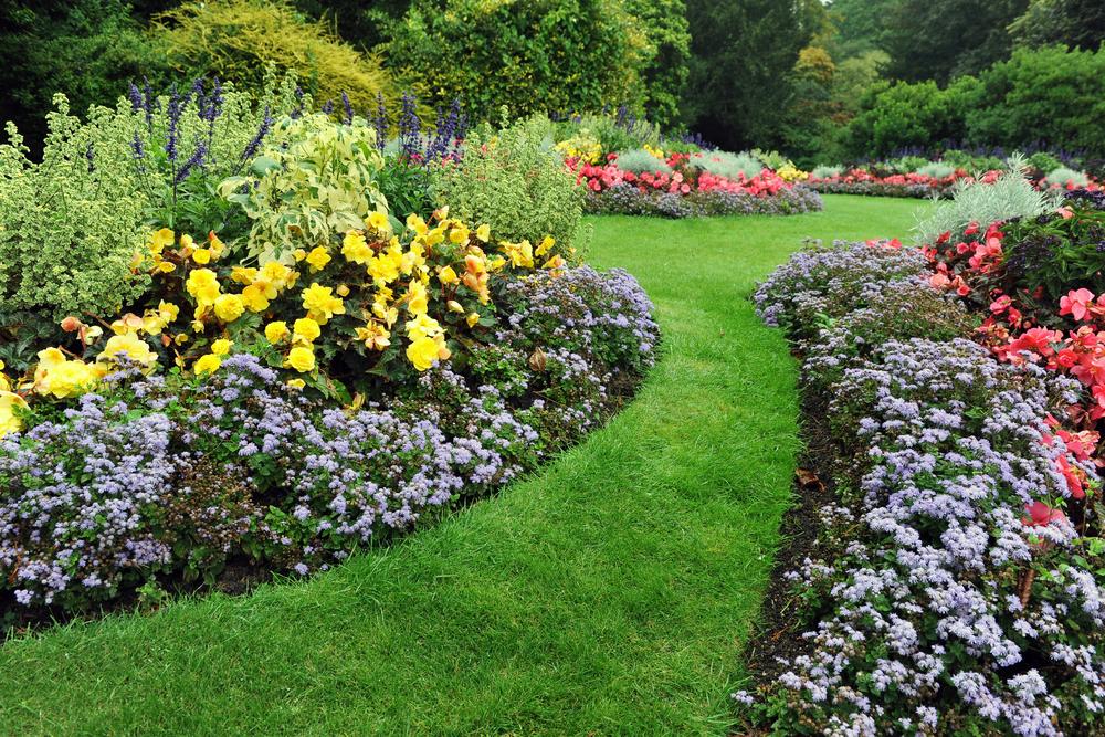 jardin attractif