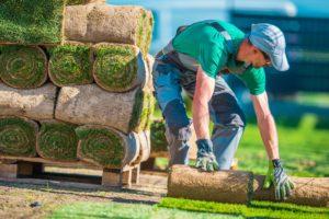 Comment choisir un paysagiste ?