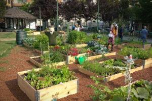 Les risques liés à l'aménagement d'un jardin