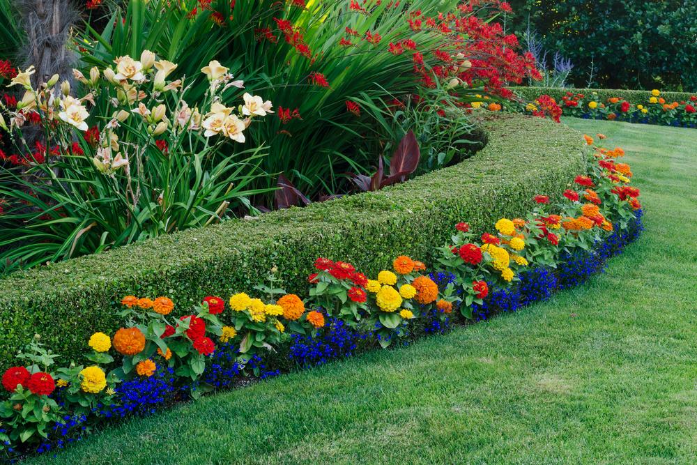jardin féerique