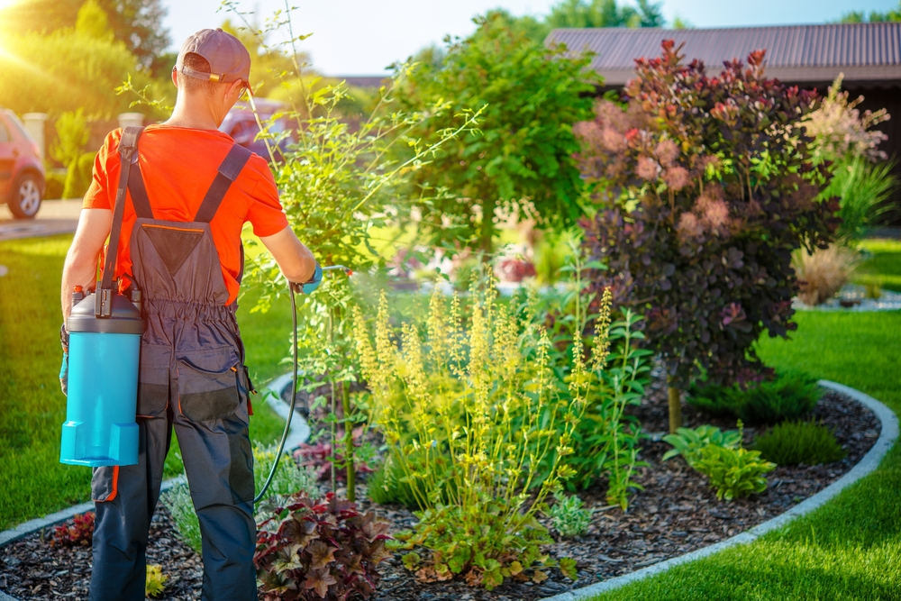 paysagiste jardin