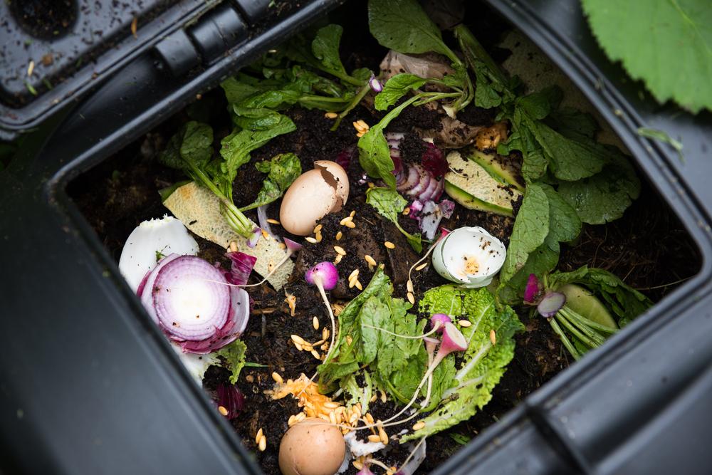 recette compost